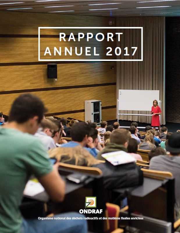 rapport annuel 2017 cover.JPG
